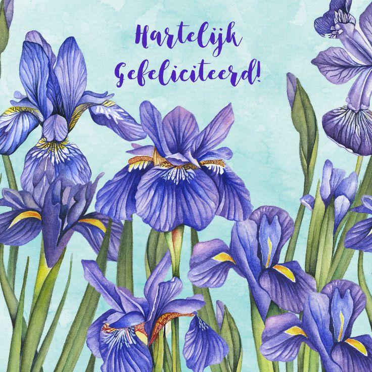 Verjaardag met mooie paarse Lissebloemen in aquarel op achtergrond van aquarel in een zachtblauwe kleur