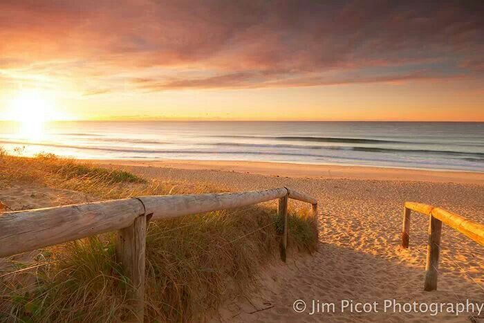 Jim Picot: Shelley Beach