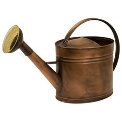Traditional Watering Cans by Posh Urban Furnishings