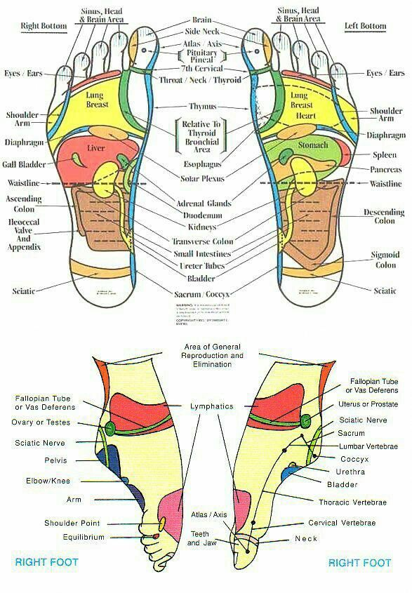 Feet And Ankles Massagetherapy Reflexology Reflexology Foot
