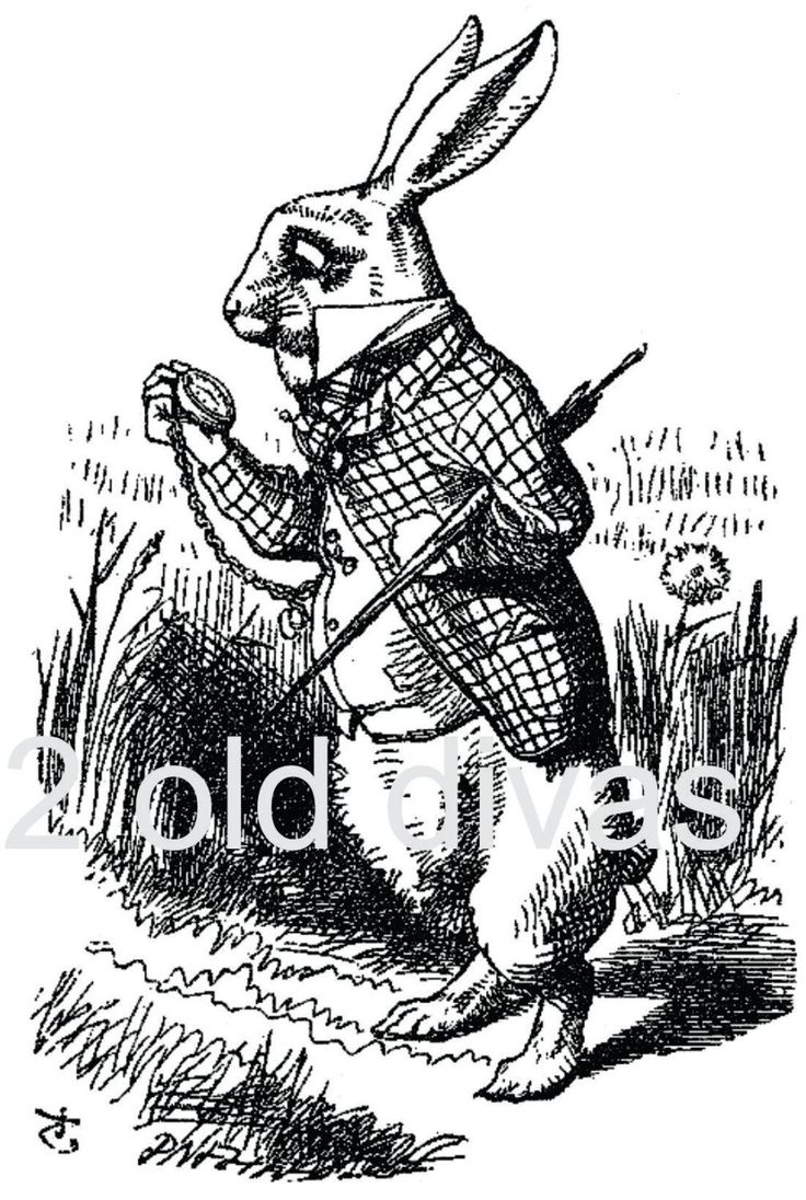Alice In Wonderland Rabbit With Watch John Tenniel Artwork