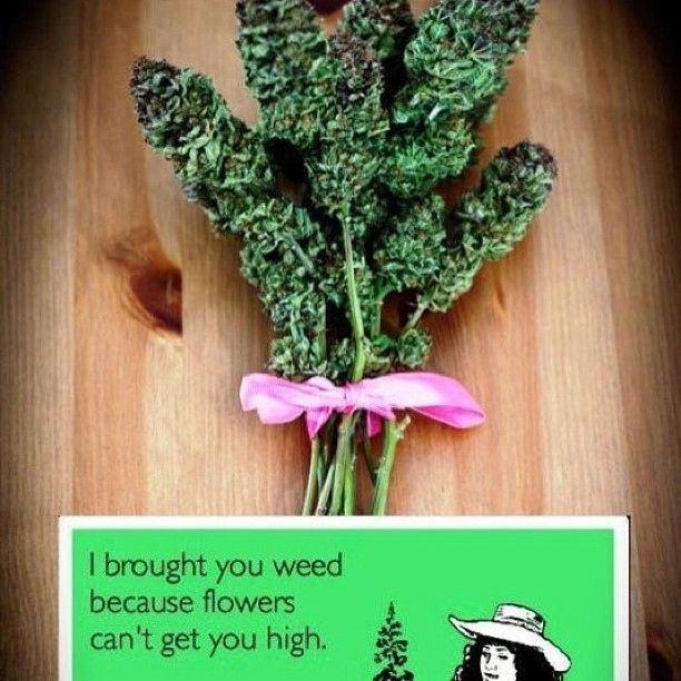 i bought you weed because flowers cant get you high.