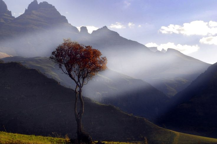 Afternoon light at Monk's Cowl #Drakensberg #Photography http://www.n3gateway.com/news5/14/151/Stephen-Pryke/d,detail.htm