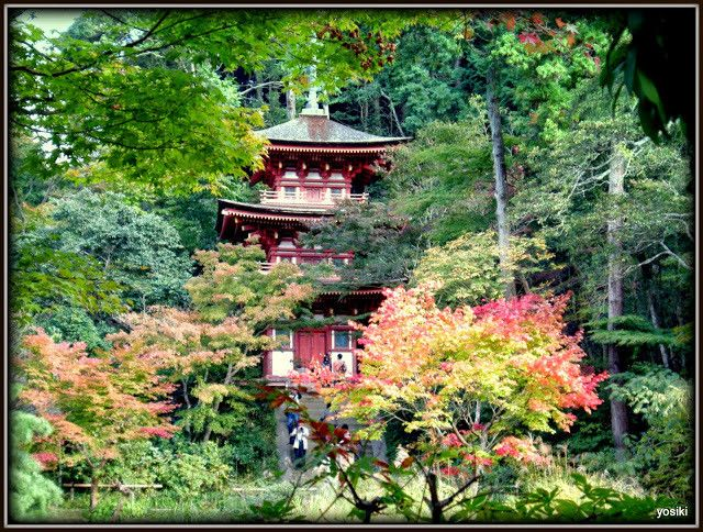 浄瑠璃寺 jyoruri temple by yosiki よしき  on 500px