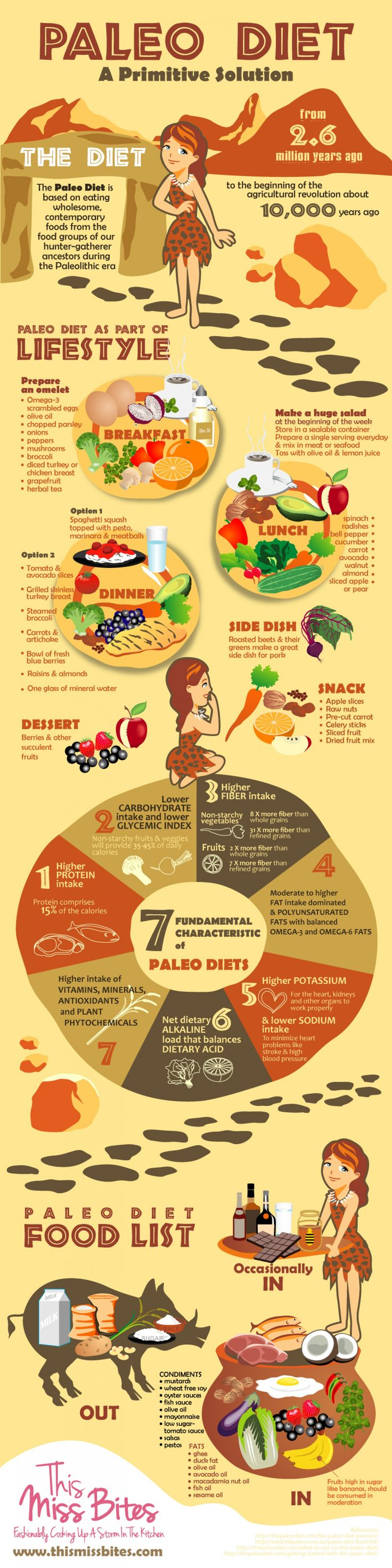 Paleolithic Diet - Paleo Diet Plan For Beginners [Infographic] - healthnbodytips.com