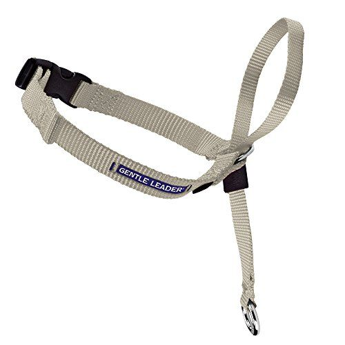 #PetSafe #Gentle #Leader Head #Collar with #Training #DVD Reduce or eliminate pulling on leash and can be used to train dogs to heel Neck strap and nose loop adjust for a custom fit Pressure applied at back of neck instead of throat to prevent choking and gagging https://pets.boutiquecloset.com/product/petsafe-gentle-leader-head-collar-with-training-dvd/