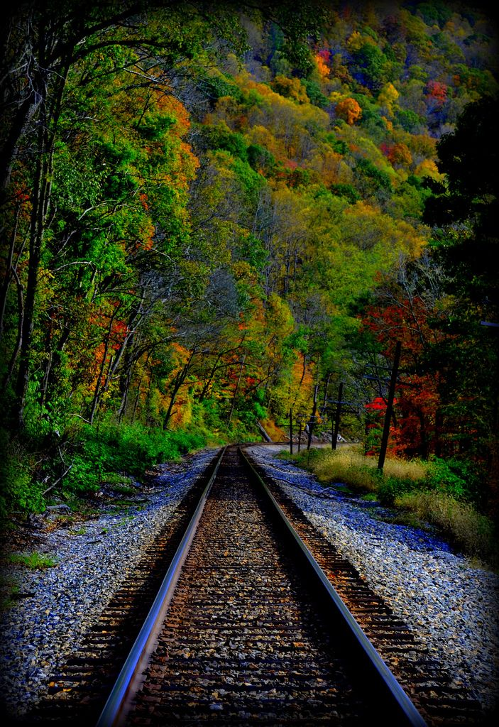 thebeautyoftheplanetearth:  New River Gorge Railroad Tracks byjoy runyon