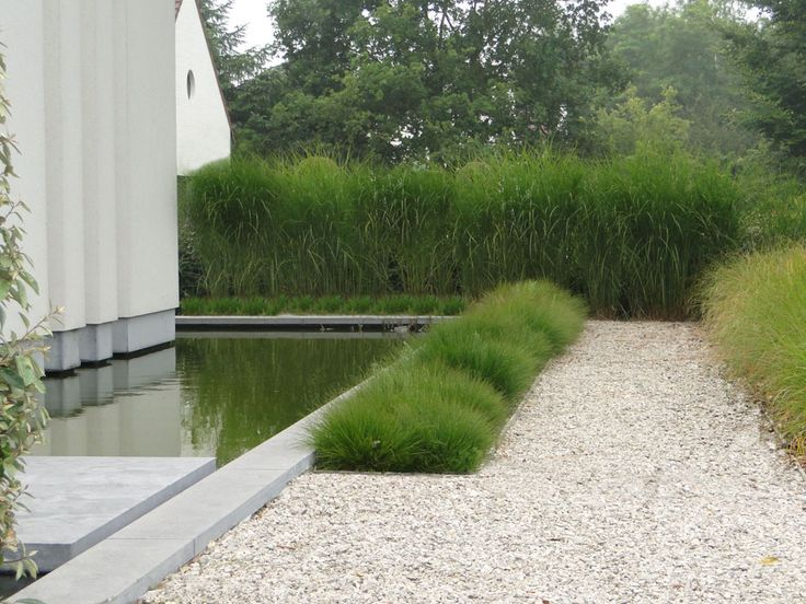 landscape by Thomas Leplat, contemporary in feel but is in keeping with the clean lines of Belgian homes, water & planting softens the hard lines