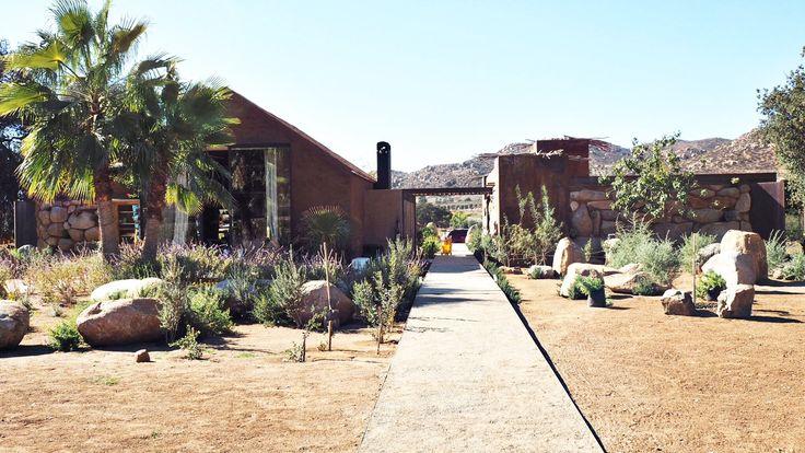 Bruma: The Ultimate Venuelust in Valle De Guadalupe Mexico | Mexico Wine Country | Venuelust