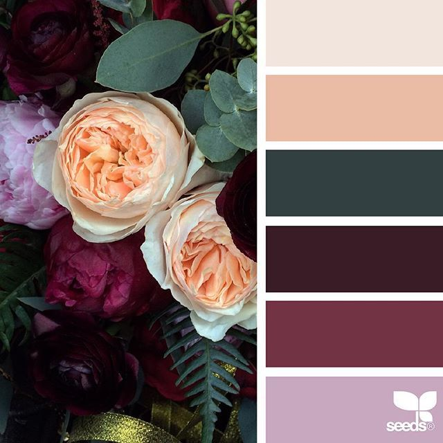 today's inspiration image for { flora palette } is by @fairynuffflower ... thank you, Steph, for generously sharing your incredibly inspiring photos in #SeedsColor !