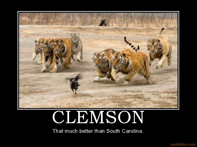 Tigers best Pinterest  on images | Clemson 248 Clemson