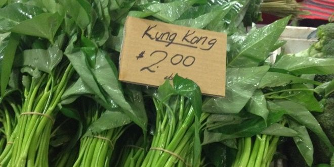 Kang Kong – delicious, nutritious and so easy to grow!