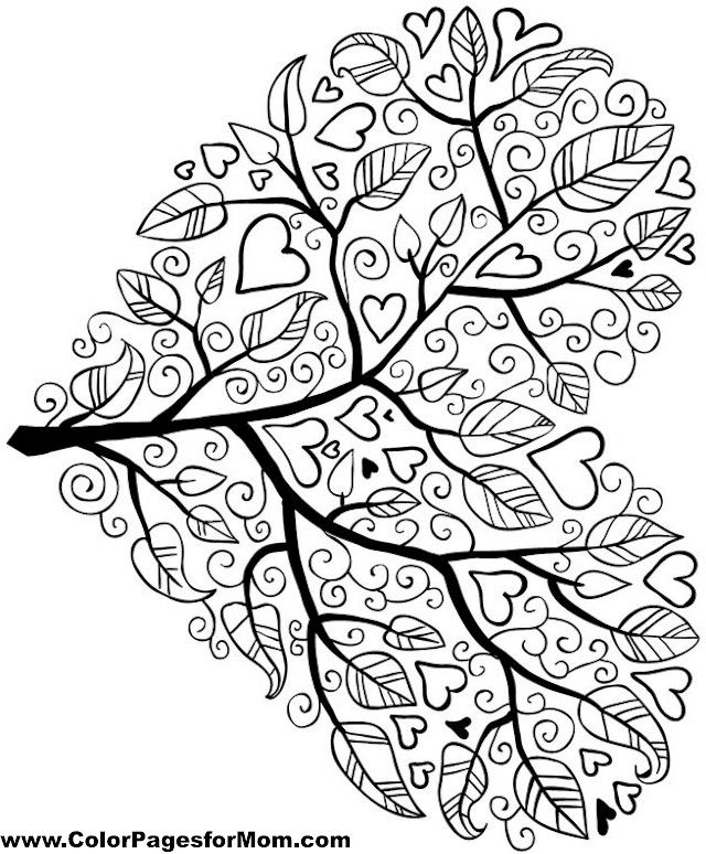 tree coloring page 5 ms