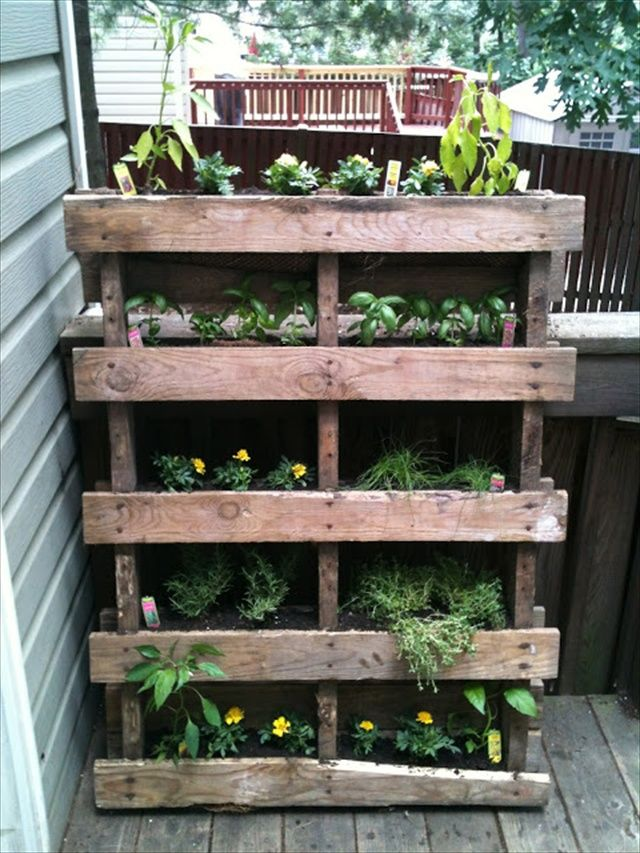 Diy Vertical Garden With Pallet Perfect For Herbs 400 x 300