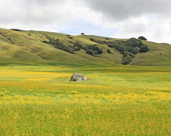 landscape photographySpring Landscape Photography