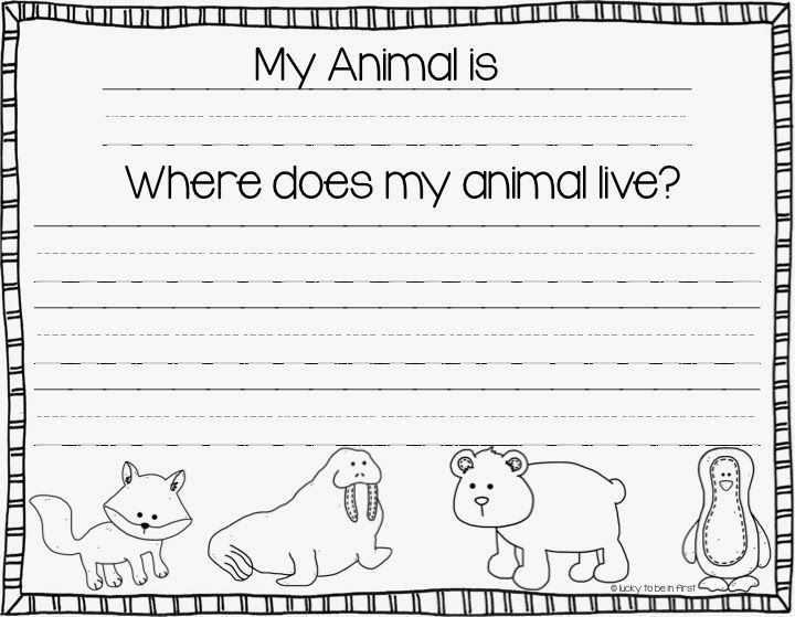 78 best 1st Grade Animal Habitats images on Pinterest Teaching - animal report template