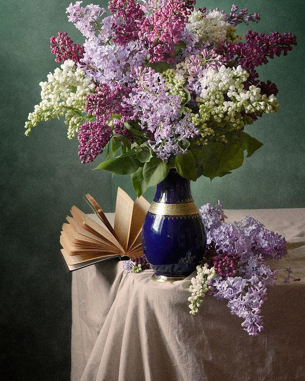 Colorful Blooming Lilac Poster By Nikolay Panov In 2020 Beautiful Flowers Photography Floral Poster Beautiful Flowers