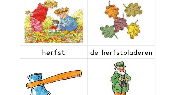 Woordkaarten thema HERFST (met lidwoorden) (Dagmar Stam).pdf