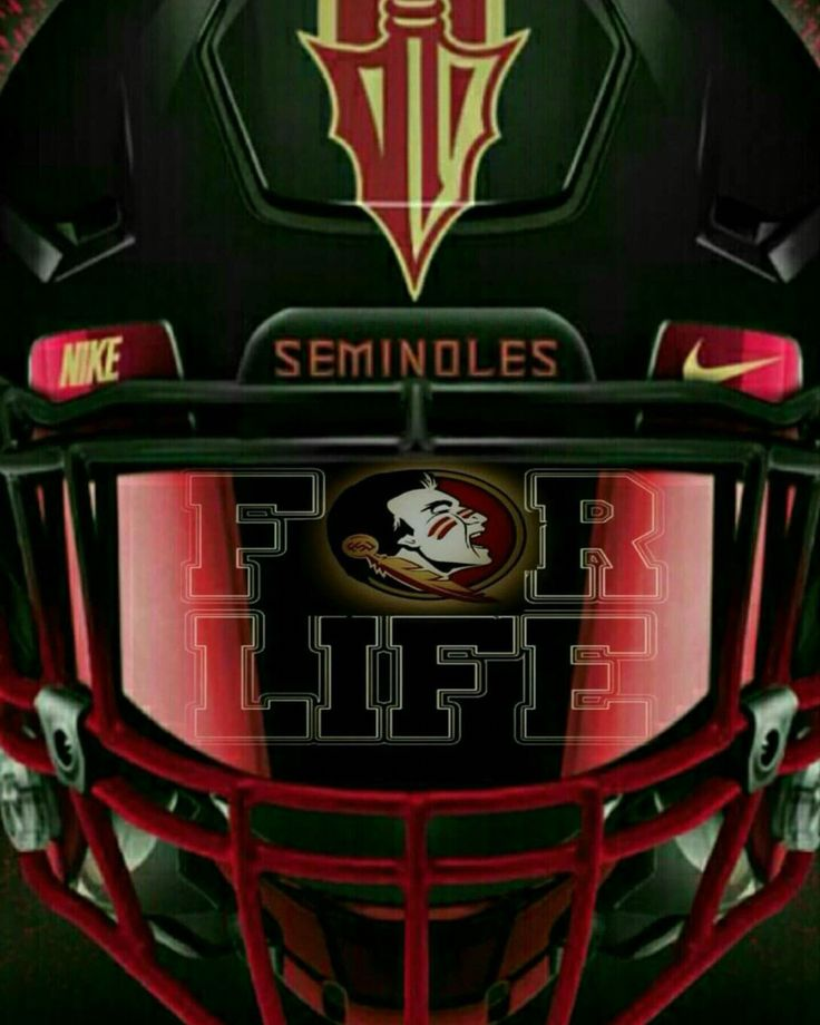 Best 25 florida state seminoles ideas on pinterest for Florida cool