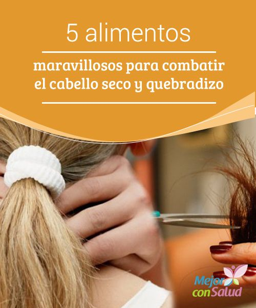 5 alimentos maravillosos para combatir el cabello seco y quebradizo  Tener el cabello seco y quebradizo es una tortura que sufren muchas personas. Este problema tan común nos obliga a comprar una gran cantidad de tratamientos, cremas, champús y aceites especiales para conseguir un pelo más vivo,