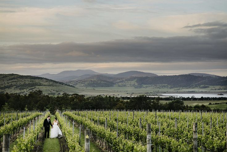 Frogmore Creek Vineyard Wedding, Tasmania at Sunset
