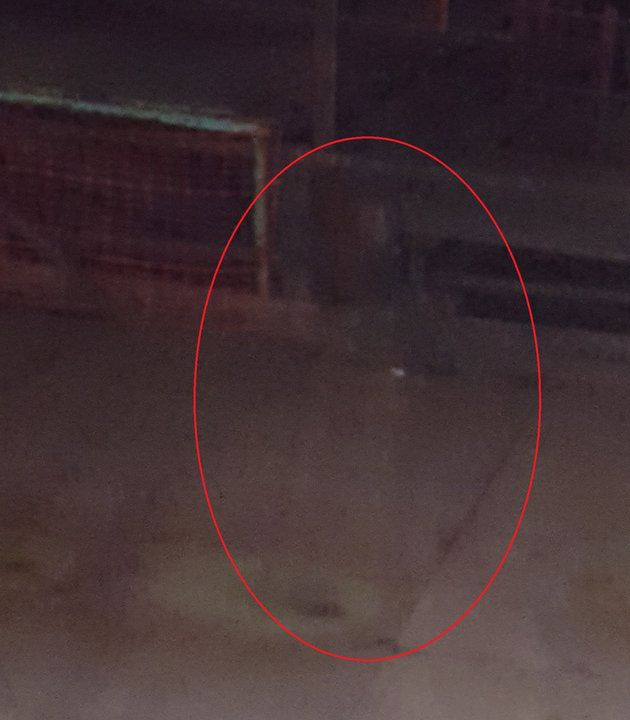 'Ghost' Of Coal Worker Pictured Strolling Through Abandoned Mine