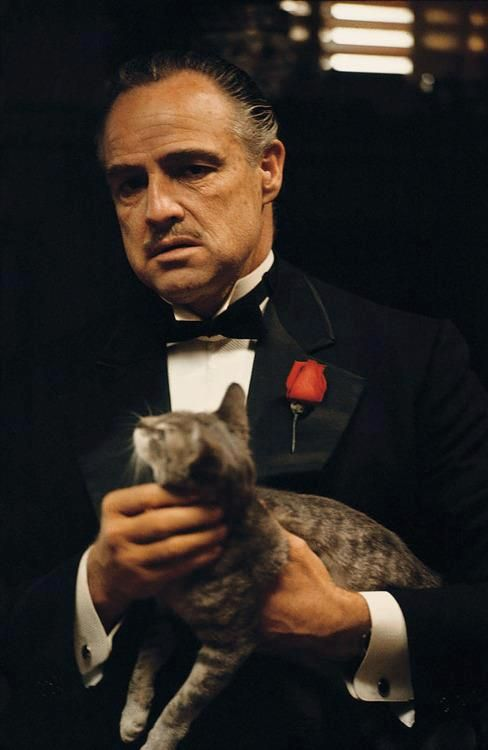 """""""Keep your friends close but your enemies closer."""" - Marlon Brando in The Godfather (Francis Ford Coppola, 1972)"""