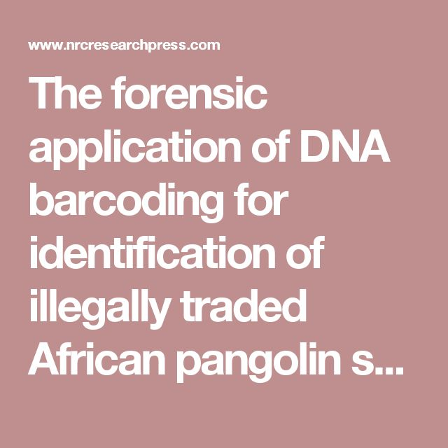 The forensic application of DNA barcoding for identification of illegally  traded African pangolin scales - Genome  This recent article published in the Journal Genome and co-authored by three board members of the APWG highlights the importance of forensic DNA methodologies in combating the pangolin trade..