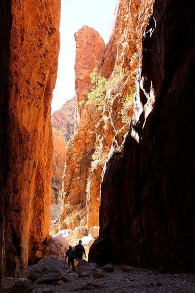Standley Chasm, Northern Territory, Australia - Photography by Basil Bilanenko