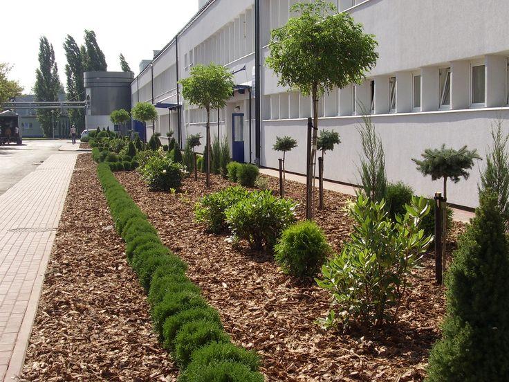 Garden-design.  PROJEKTOWANIE OGRODÓW KIELCE ZIELEŃ PRZY FIRMIE FEDERAL- MOGUL