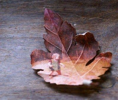 ...: Ideas, Fall Leaves, Family Trees, Vintage Photos, Modern Mourners, Families Photos, Families Trees, Old Photos, Fall Photos