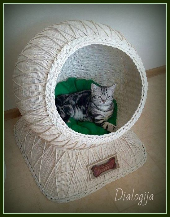 Dog/Cat house, Dialogija