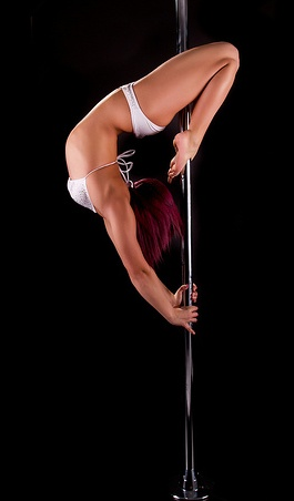 Reckless Dandelion There Is A Difference Between Pole Dancing And Stripping Pole Dancing Pole Art Pole