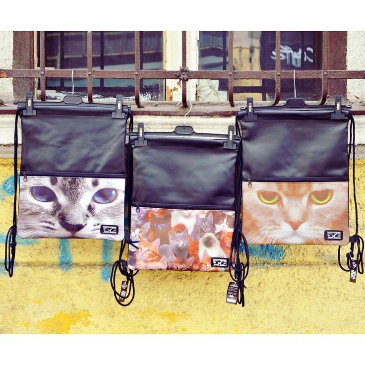 Cat-pack  cat gymbag backpack szputnyik sporty animals