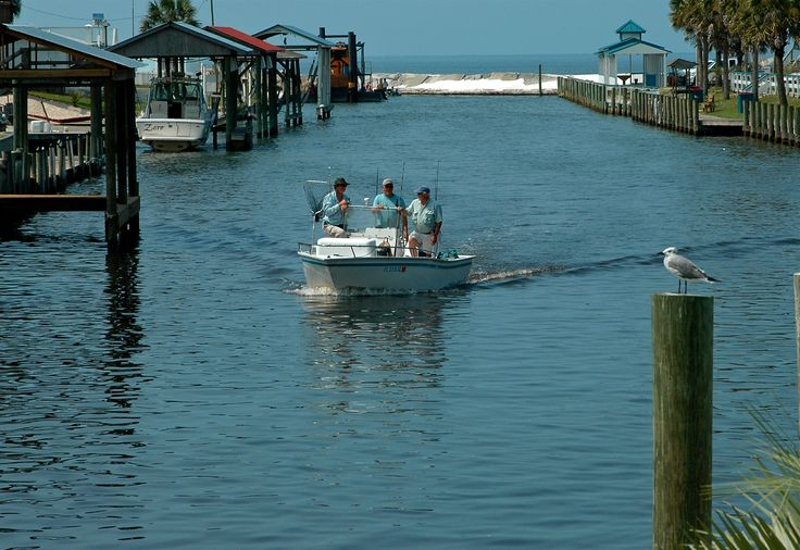 1000 images about let 39 s go fishing on pinterest for Fishing mexico beach fl