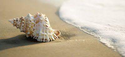 O  p  t  i  m  i  s  m: Θάλασσα, η μεγάλη ξελογιάστρα