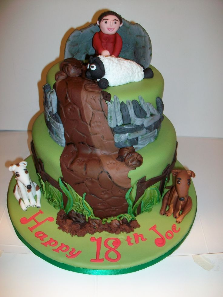 18th Birthday Cake Walking Countryside Theme With Dry
