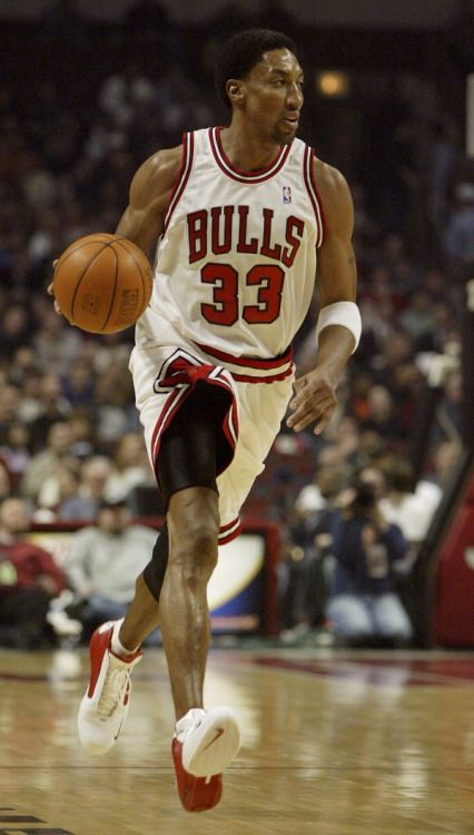 scottie pippen nba basketball chicago bulls bulls