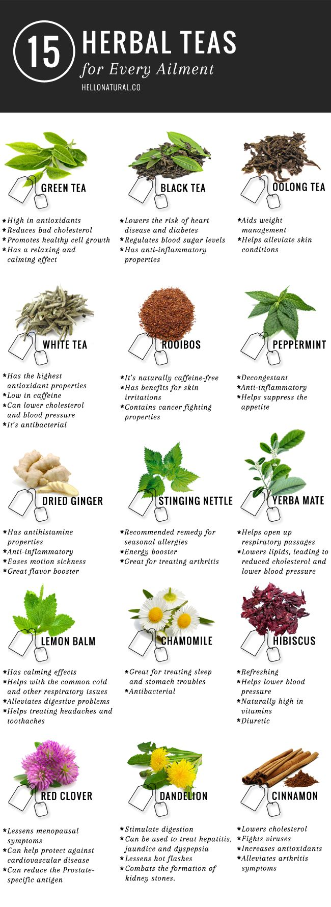 The Health Benefits of Tea + 15 Herbal Teas for Any Ailment | HelloNatural.co #infographic #drinks