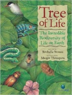 This book offers a great introduction to taxonomy and the Linnaeus classification system while incorporating an environmental message that focuses on ecosystems and biological diversity.  Several species are singled out in the text for the natural services they provide.  Students could learn more about the role of plants in providing food and medicine by exploring... - See more at: http://resources4rethinking.ca/en/resource/tree-of-life#sthash.x9tNuewe.dpuf