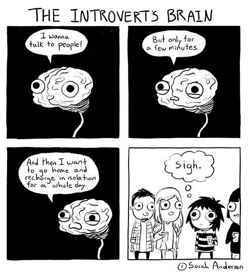 Sarah's Scribbles - introvert brain