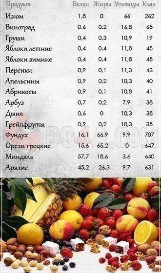 Количество белков, жиров и углеводов в различных продуктах питания | Хозяин и Хозяюшка