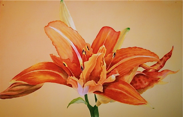 One of my larger, framed florals. The reference photo is one of the day-lilies from my garden.