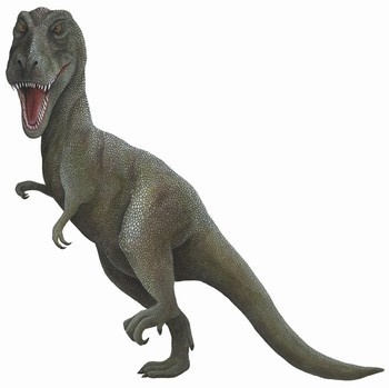 16 best Dinosaur Wall Stickers & Decorations images on Pinterest ...