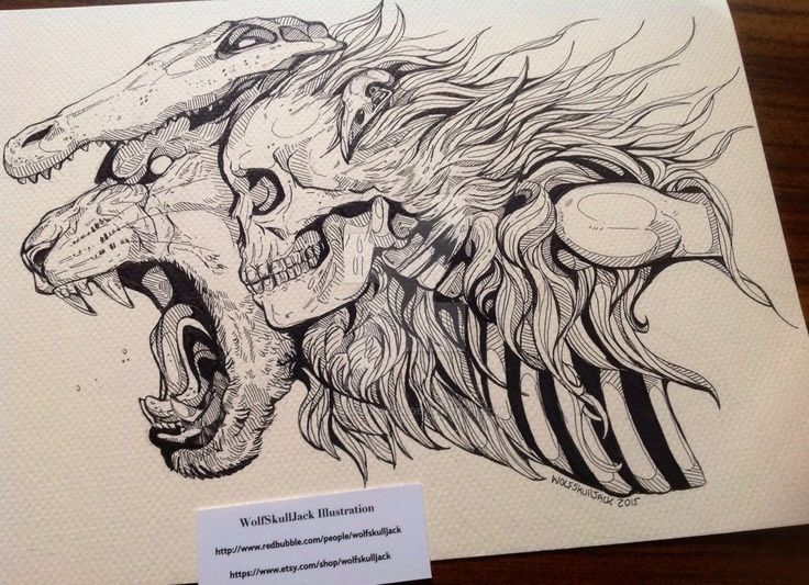Lineart Wolf Tattoo : 24 best ink draws images on pinterest doodles doodle and zentangle