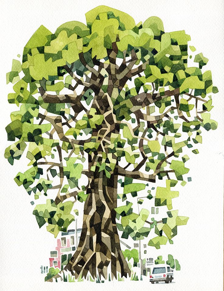 """Sierra Leone Cotton Tree"" - Save Our Souls magazine"