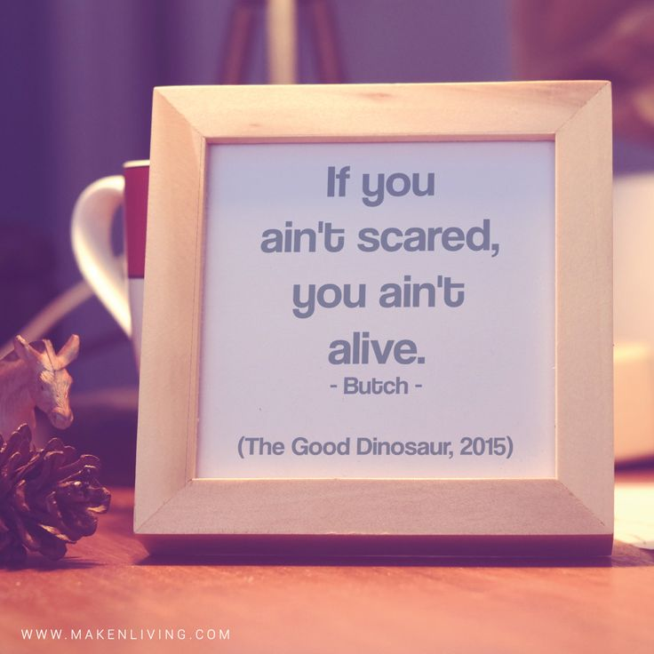 Quote : If you ain't scared, you ain't alive. - Butch ...