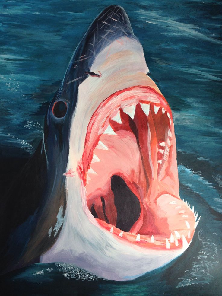 Shark Painting Acrylic The Jaws