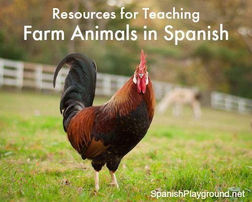 K-2: Spanish Animals & Sounds - Teachingcom
