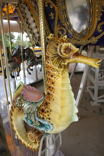 The art of carousel creatures is not only beautiful, but fun and makes me feel like a kid again, especially if I get to ride.  To travel around the states just to visit carousels, would be a dream vacation.   This sea horse is  at the San Jose, California, Park and Zoo.